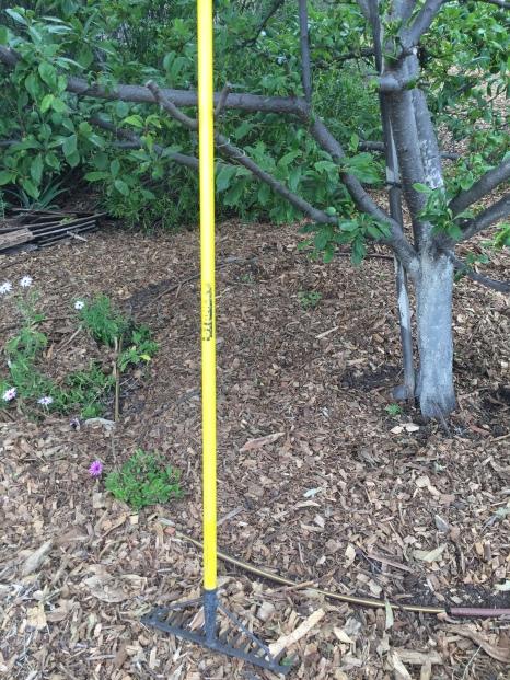Old orchard rake rest