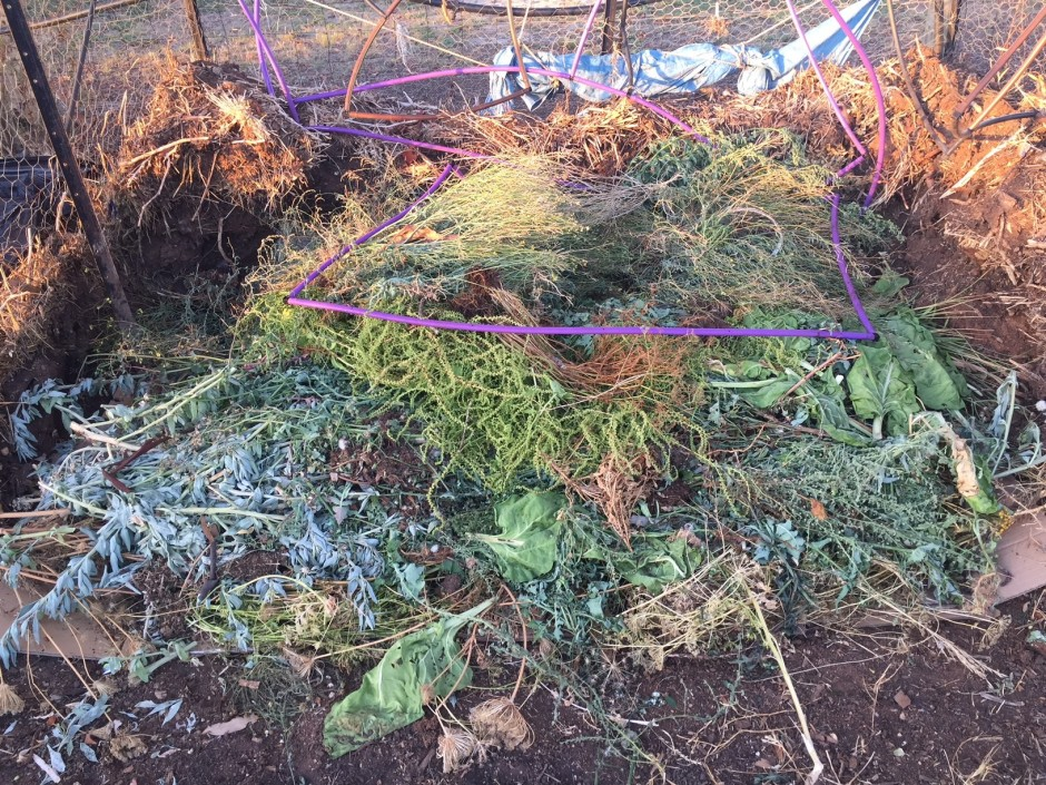 Compost - new heap with greywater