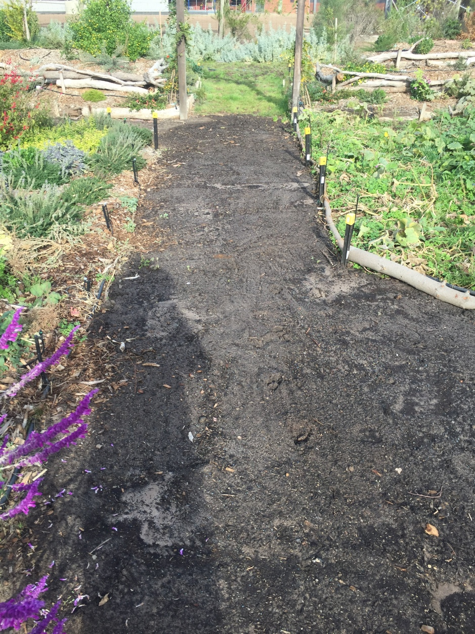 Path - prepped