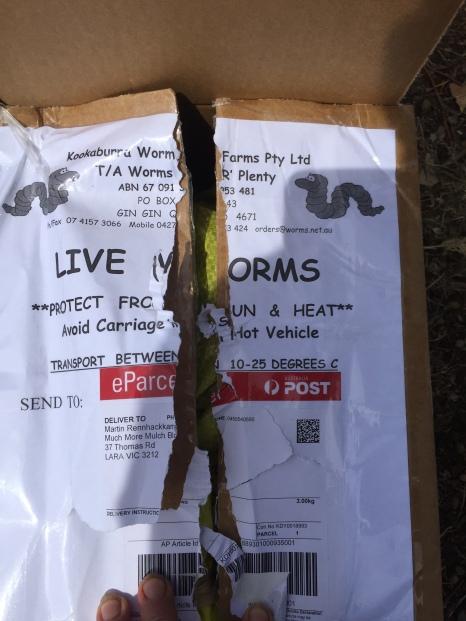 Worm - mail
